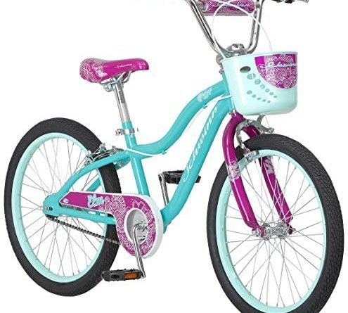 5140oZFcM9L. AC  495x445 - Schwinn Elm Girls Bike for Toddlers and Kids