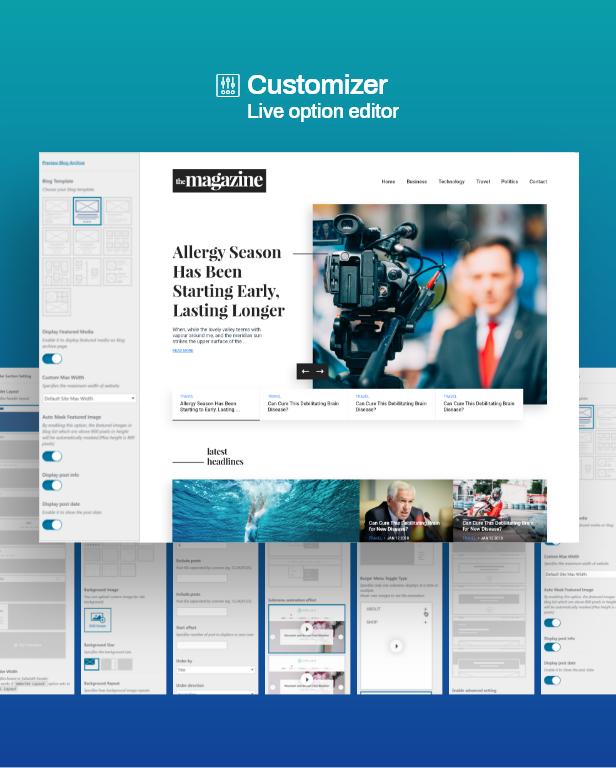 3 customizer - Phlox Pro - Elementor MultiPurpose WordPress Theme