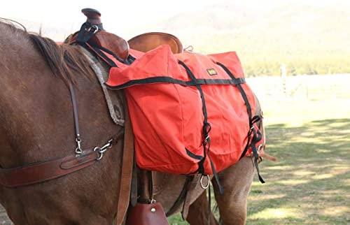 4195bT+aJYL. AC  - TrailMax Saddle Panniers