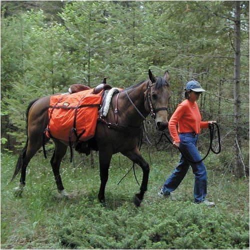 61KcTqhqk1L. AC  - TrailMax Saddle Panniers