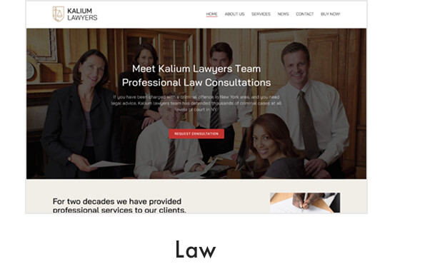 demo law - Kalium - Creative Theme for Professionals