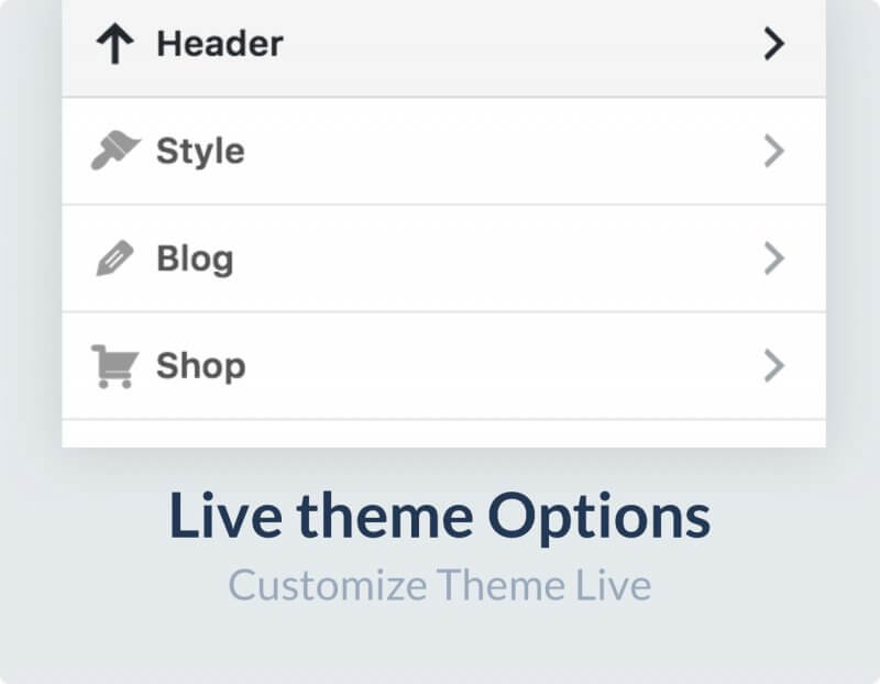 live theme options 1 800x622 - Flatsome | Multi-Purpose Responsive WooCommerce Theme