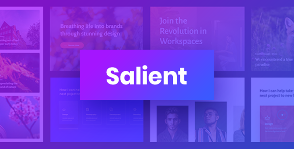 new theme preview.  large preview - Salient - Responsive Multi-Purpose Theme