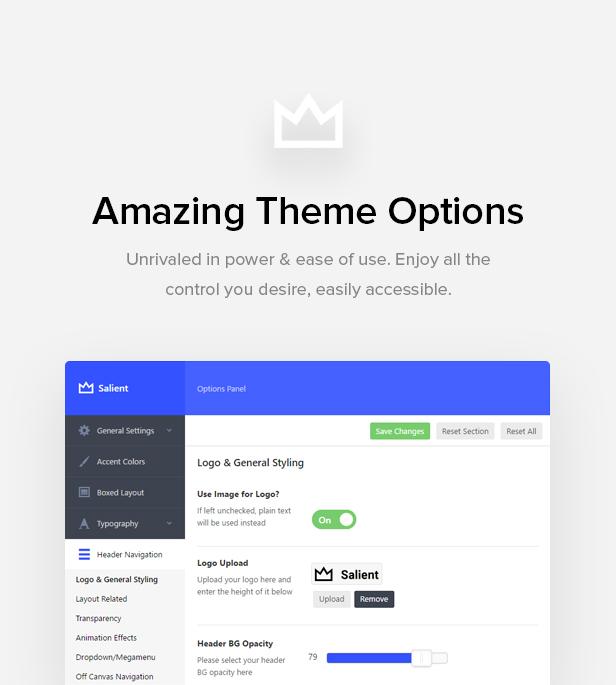 theme options - Salient - Responsive Multi-Purpose Theme