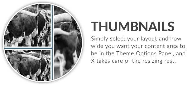 x feature small thumbnails - X | The Theme