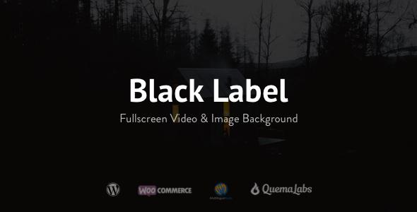 01 Presentation.  large preview - Black Label - Fullscreen Video & Image Background