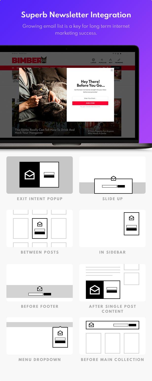 1598571195 641 newsletter - Bimber - Viral Magazine WordPress Theme