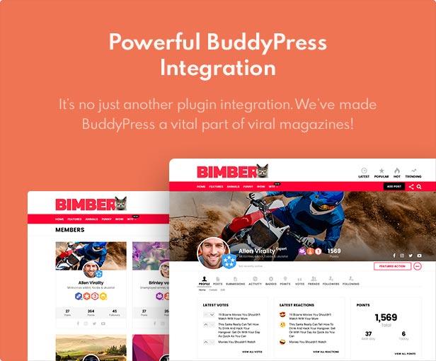 1598571195 704 buddypress - Bimber - Viral Magazine WordPress Theme