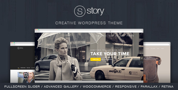 1 presentation.  large preview - Story - Creative Responsive Multi-Purpose Theme