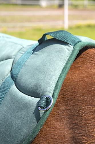 51gUq+ZJ2oL. AC  - Best Friend Western Style Bareback Saddle Pad
