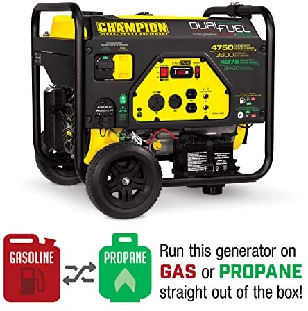 51xjwjQixuL. AC  - Champion 3800-Watt Dual Fuel RV Ready Portable Generator with Electric Start