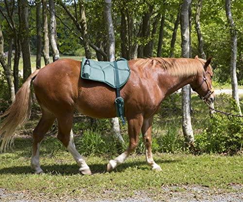 61kIOuWkyTL. AC  - Best Friend Western Style Bareback Saddle Pad