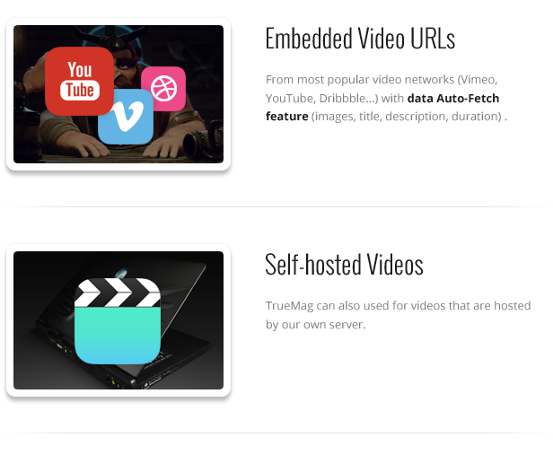 TF TM 008 - True Mag - WordPress Theme for Video and Magazine