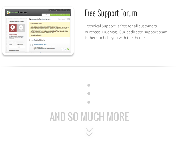 TF TM 014 - True Mag - WordPress Theme for Video and Magazine