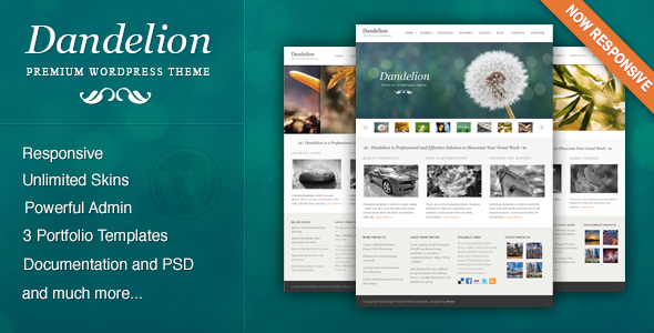 1 presentation.  large preview - Dandelion - Powerful Elegant WordPress Theme