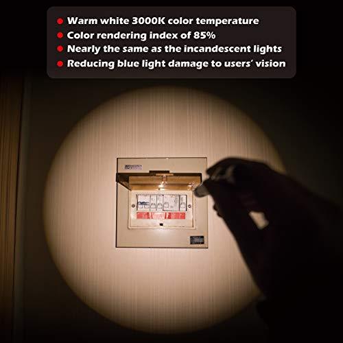 41C90v2rONL - Weltool M6-Dr Diagnostic Medical Penlight No-Glare for Doctor Nurse Inspection Torch Medical Care Emergency Pocket Pen Light with Clip