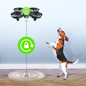bbd35cc6 ed35 4383 aae2 decdd373fd9c.  CR0,0,300,300 PT0 SX300 V1    - Potensic Upgraded A20 Mini Drone Easy to Fly Drone for Kids and Beginners, RC Helicopter Quadcopter with Auto Hovering, Headless Mode, Remote Control and Extra Batteries - Green