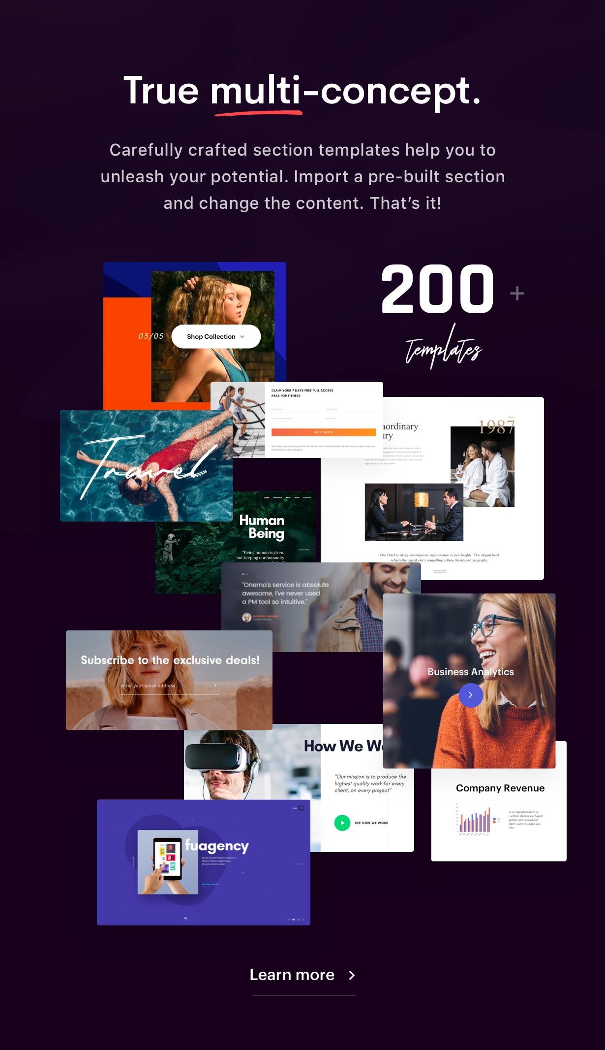 Collection - Ave - Responsive Multi-Purpose WordPress Theme