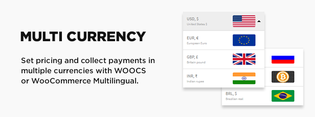 multi currency - Book Your Travel - Online Booking WordPress Theme