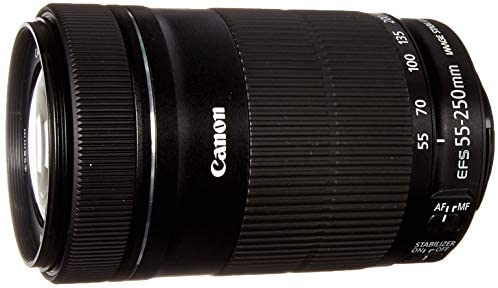 41cjEQCcEuL. AC  - Canon EF-S 55-250mm F4-5.6 is STM Lens for Canon SLR Cameras (Renewed)
