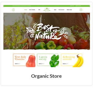 organic store woocommerce theme new - Nitro - Universal WooCommerce Theme from ecommerce experts
