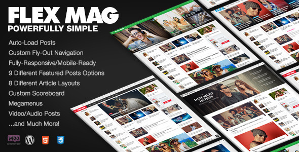 01 preview1.  large preview - Flex Mag - Responsive WordPress News Theme