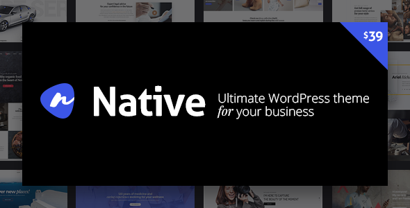 01 preview1.  large preview - Native - Stylish Multi-Purpose Creative WP Theme