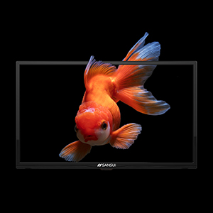 955e2412 b4b7 4355 9cc1 6b1ec4b8151d.  CR0,0,300,300 PT0 SX300 V1    - SANSUI 24 Inch TV 720P Basic S24 LED HD TV High Resolution Flat Screen Television Built-in HDMI,USB,VGA Ports - Refresh Rate 60Hz (2020 Model)…