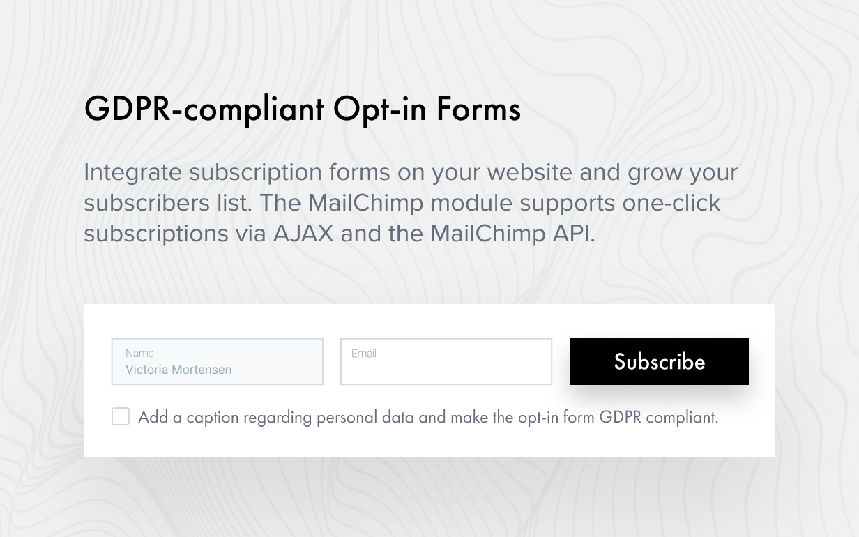 opt in form - Authentic - Lifestyle Blog & Magazine WordPress Theme