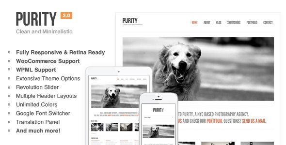 01 Preview.  large preview - Purity: Responsive, Minimal & Bold WP Theme