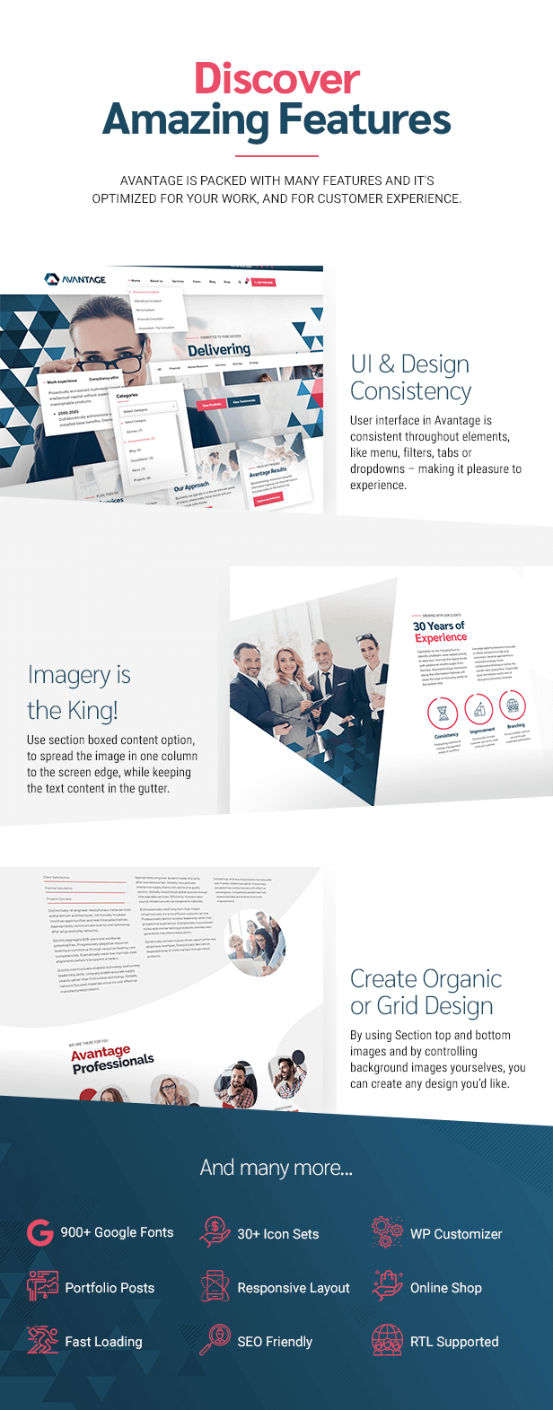 1611586475 555 Theme Info 006 - Avantage - Business Consulting