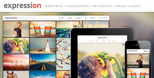 1 presentation.  large preview - Expression Photography Responsive WordPress Theme
