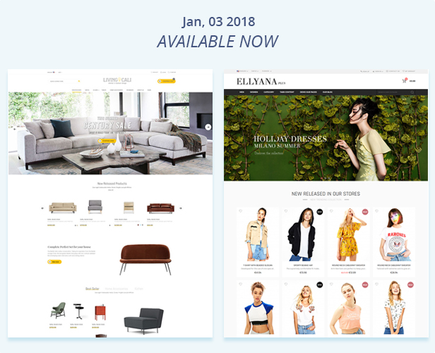 Jan 2018 1 - Fastest - Multipurpose Responsive Magento 2 and 1 Fashion Theme