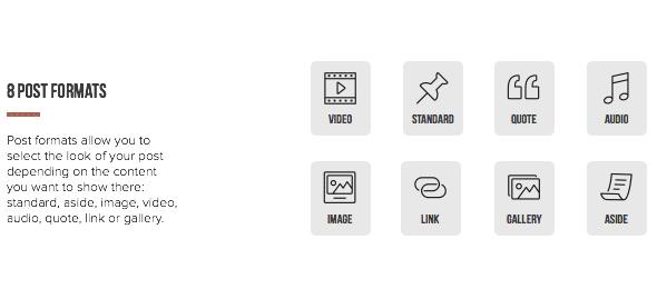 desc post format - Pluto Clean Personal WordPress Masonry Blog Theme