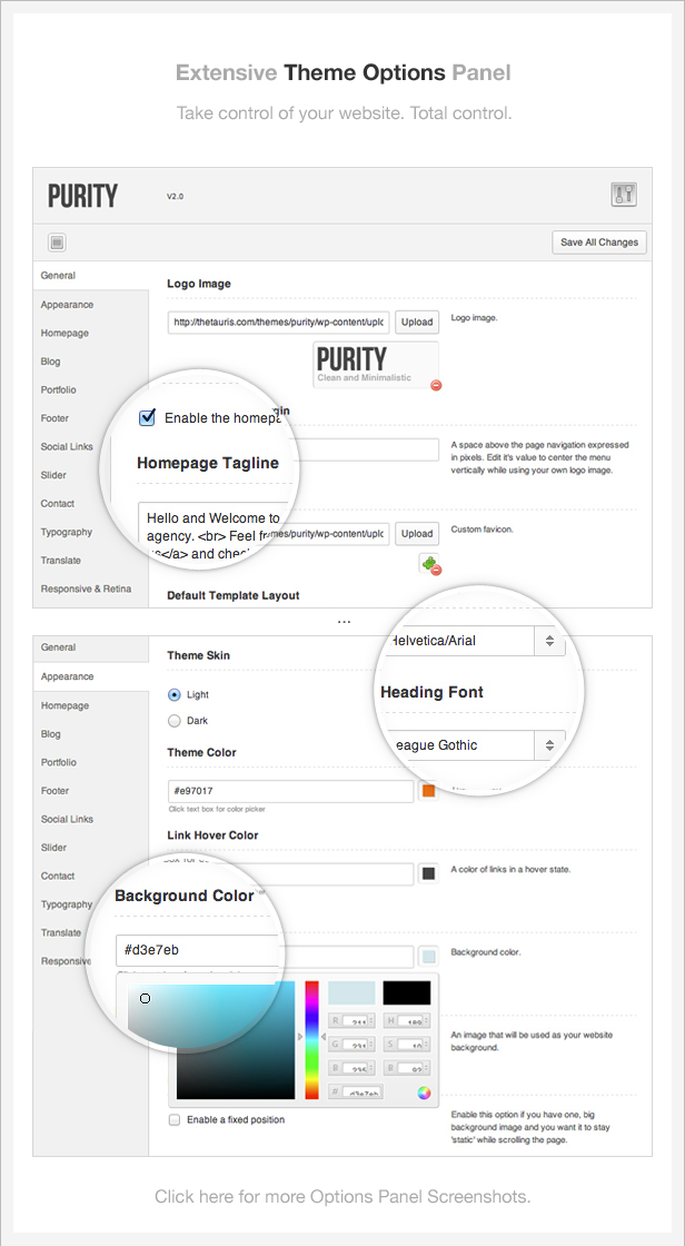 info theme options - Purity: Responsive, Minimal & Bold WP Theme