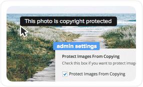tf desc copy protection optimized - Pluto Clean Personal WordPress Masonry Blog Theme