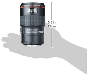 31QCcrxFv5L. AC  - Canon EF 100mm f/2.8L IS USM Macro Lens for Canon Digital SLR Cameras, Lens Only
