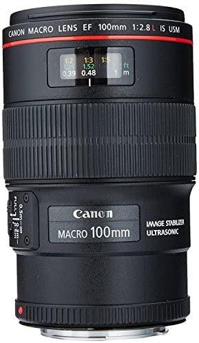 51Fv86cqIGL. AC  - Canon EF 100mm f/2.8L IS USM Macro Lens for Canon Digital SLR Cameras, Lens Only