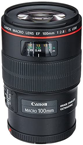 51kPr6tFhPL. AC  - Canon EF 100mm f/2.8L IS USM Macro Lens for Canon Digital SLR Cameras, Lens Only