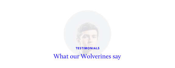 opinions about lobo wordpress theme intr hdr - Lobo - WordPress Portfolio for Freelancers & Agencies