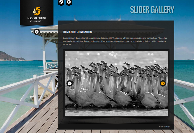 screenshot10 - BIG Gallery - Fullscreen Photography Portfolio