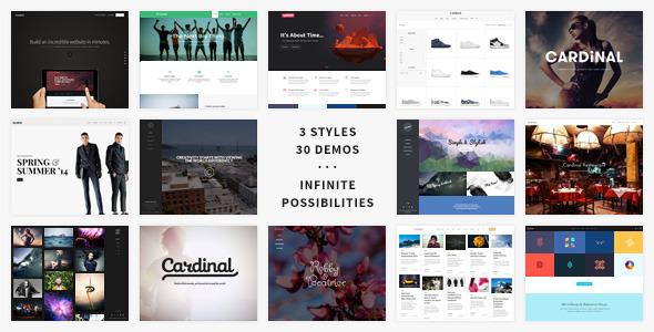 01 preview.  large preview - Cardinal - WordPress Theme