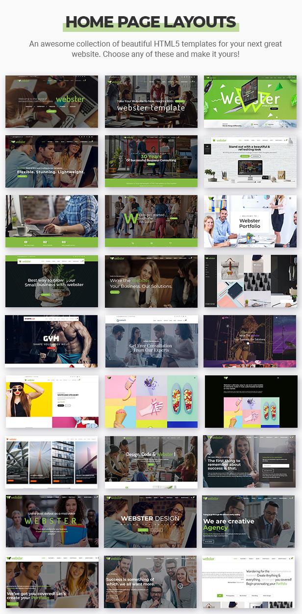 homepage3 - Webster - Responsive Multi-purpose HTML5 Template