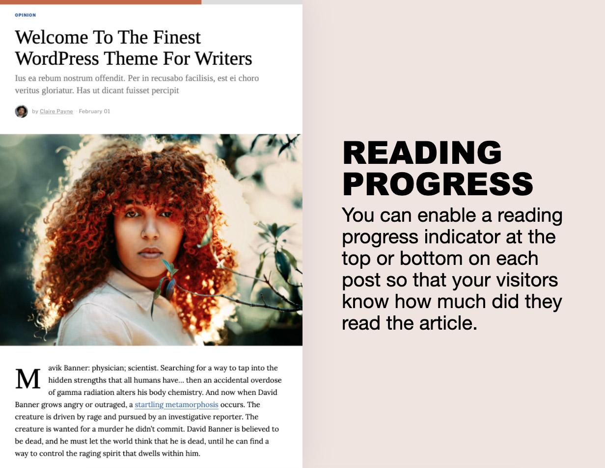 progress - The Fox - Minimal WordPress Blog Magazine Theme