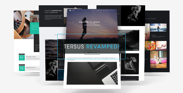 tersus preview.  large preview - Tersus - Business Portfolio Parallax Muse Template