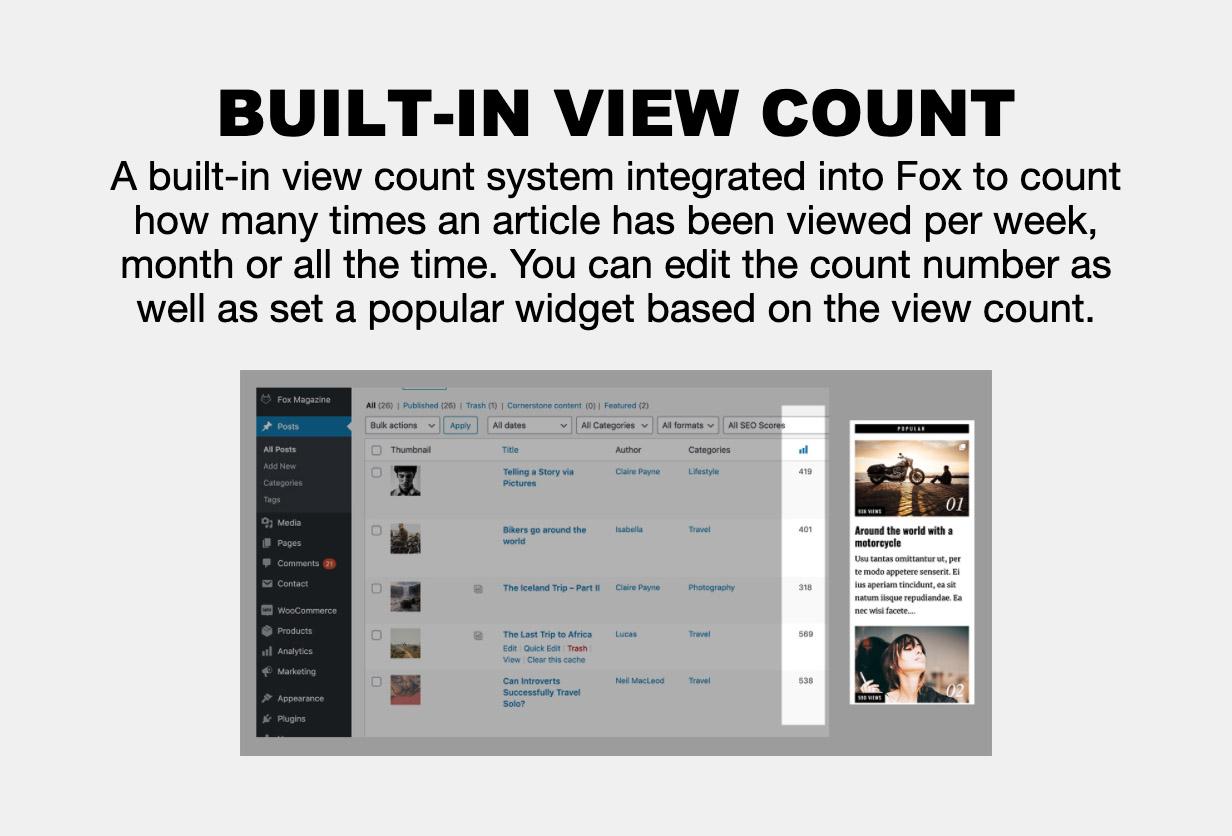 viewcount - The Fox - Minimal WordPress Blog Magazine Theme