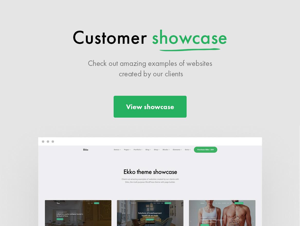 Showcase2 - Ekko - Multi-Purpose WordPress Theme with Page Builder