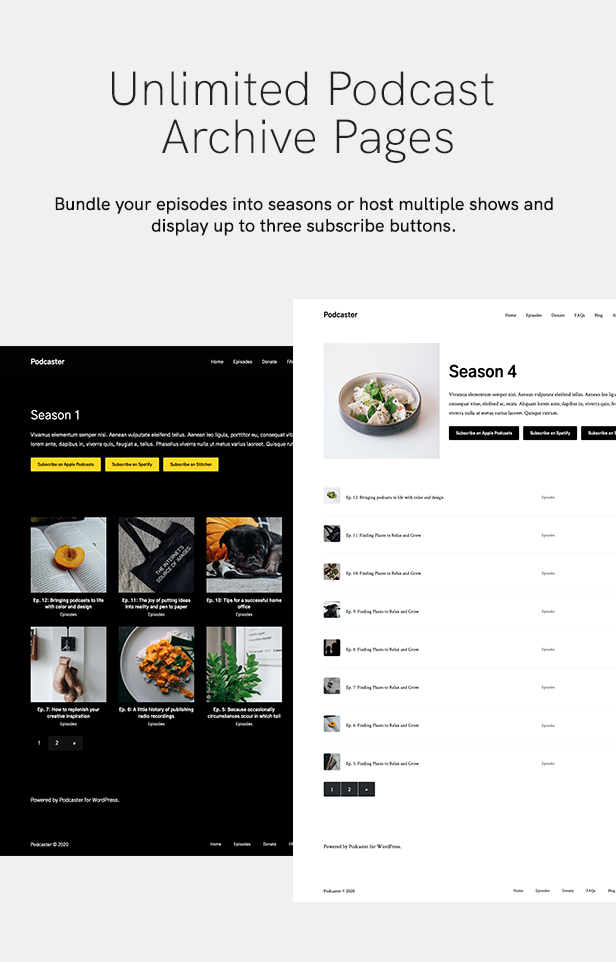 sales page 10 archive page 2 - Podcaster - Multimedia WordPress Theme