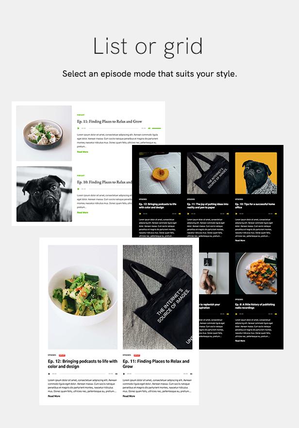 sales page 7 listgrid 2 - Podcaster - Multimedia WordPress Theme