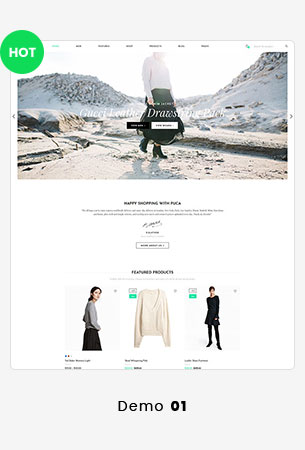 24 puca info - Puca - Optimized Mobile WooCommerce Theme